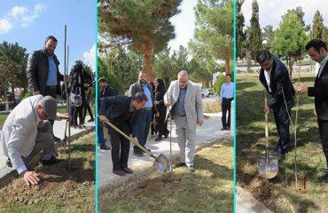 مراسم بزرگداشت روز درختکاری در دانشگاه دامغان برگزار شد