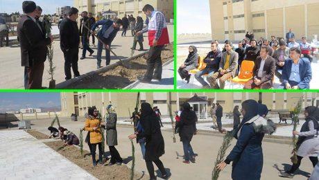 مراسم بزرگداشت روز درختکاري در دانشگاه دامغان برگزار شد
